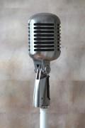 mikrofon_elvis_hi
